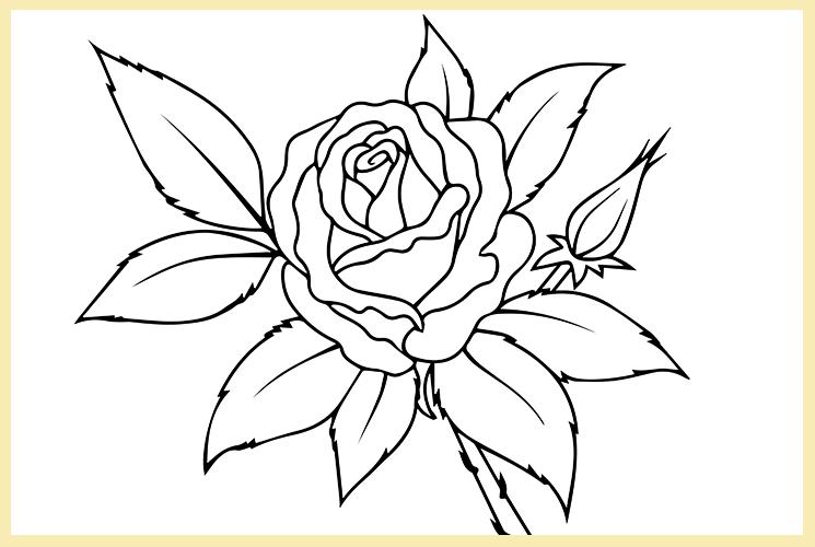 """Раскраска по номерам """"Роза"""""""