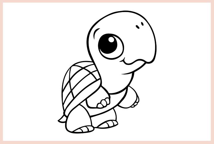 """Раскраска """"Черепаха"""""""