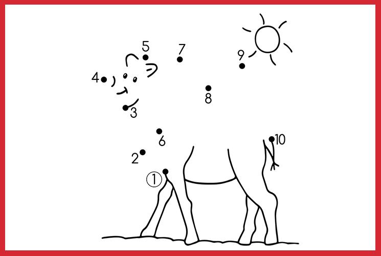 """Раскраска по точкам """"Верблюд"""""""
